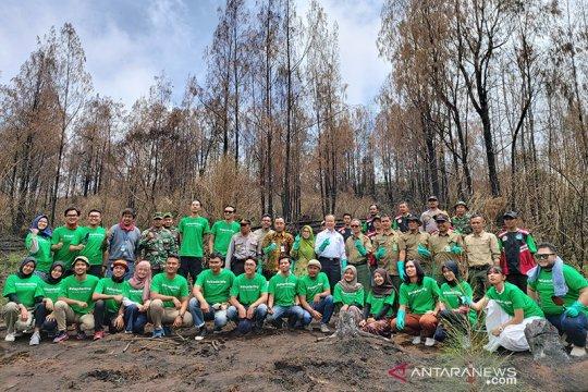 1,1 hektare lahan di Gunung Ijen dipulihkan ratusan cemara gunung