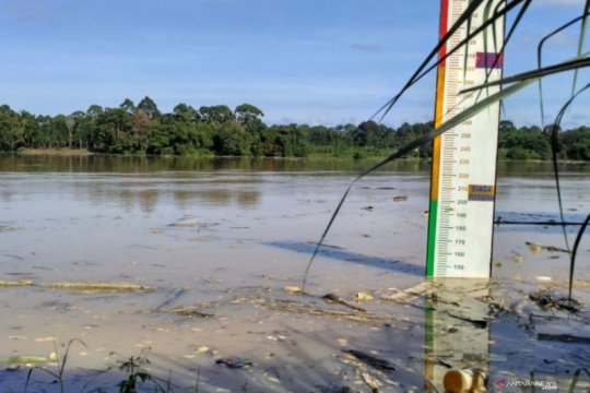 Debit air Sungai Batanghari meningkat signifikan, BPBD bersiap diri