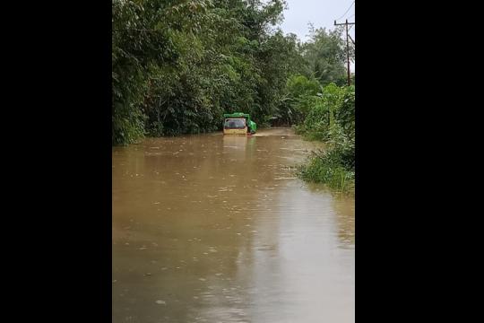 Banjir lumpuhkan ruas jalan Putussibau-Pontianak
