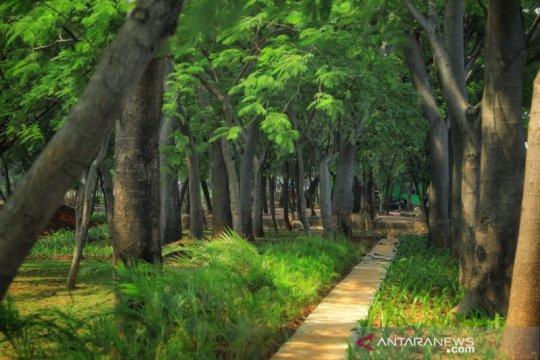 PPK kemayoran revitalisasi Utan Kemayoran di lahan seluas 22 hektar