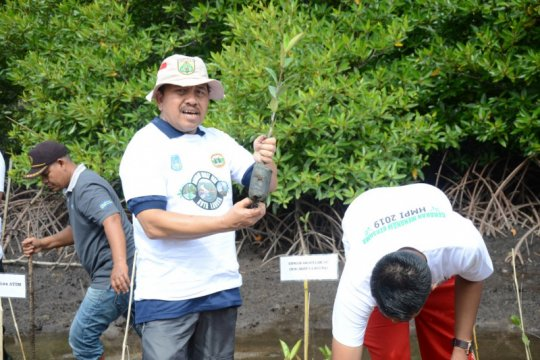 Pemkot Langsa ajukan hutan bakau di program strategis wisata nasional