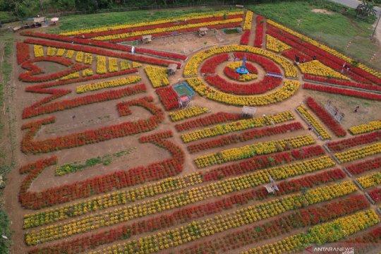 Wisata Taman Bunga Dharmasraya