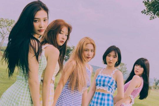 Kemarin, lagu baru Red Velvet sampai Redmi Note 8 laris di Indonesia