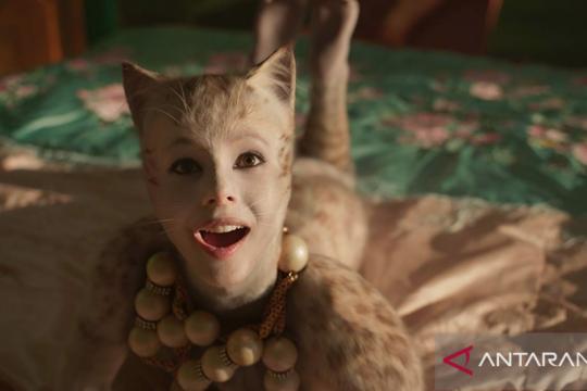"""""""Cats"""" minim dialog, kisahkan kucing """"Jellicles"""" lewat lagu dan tarian"""