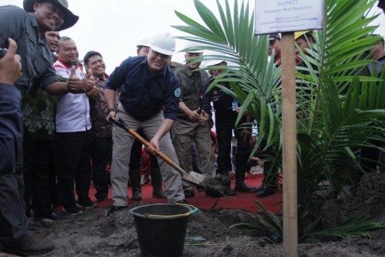 Peremajaan kebun sawit di Musi Banyuasin capai 12.238 hektare