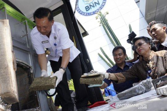 BNNP NTB musnahkan 13,29 kilogram ganja barang bukti sitaan