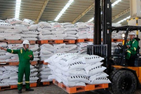 Petrokimia : Kurangnya alokasi pupuk di daerah akibat jatahnya menurun