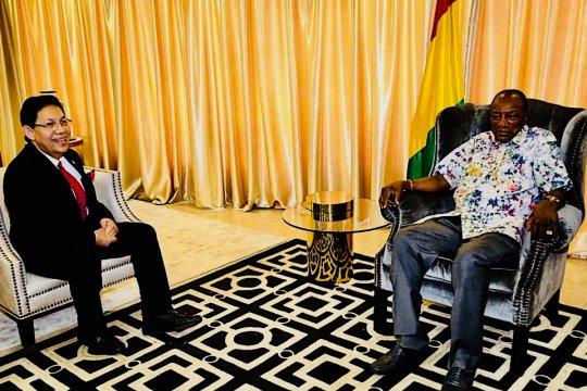 Presiden  Guinea, realisasikan kerjasama investasi