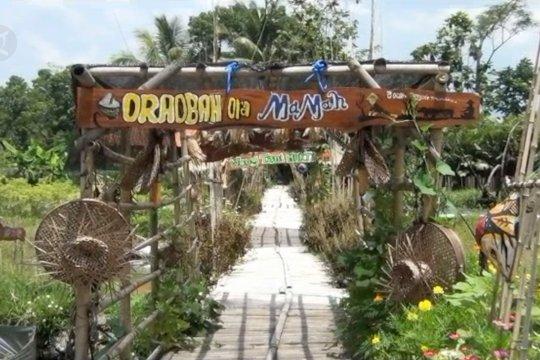Kampung wisata mina padi lecut generasi muda bertani