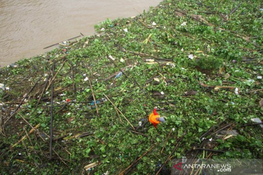 Bagian Sungai Martapura di Banjarmasin hadapi serbuan sampah