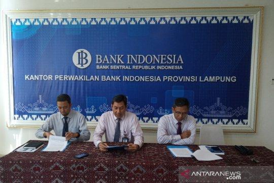 BI: Konsumsi domestik masih menjadi penopang utama ekonomi Lampung