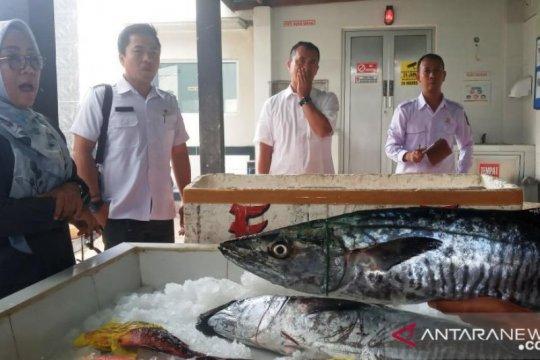 Keterbatasan kargo hambat  ekspor ikan laut NTB