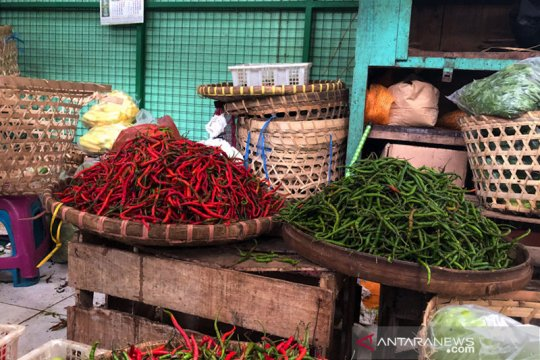 Harga cabai di pasar tradisional Yogyakarta merangkak naik
