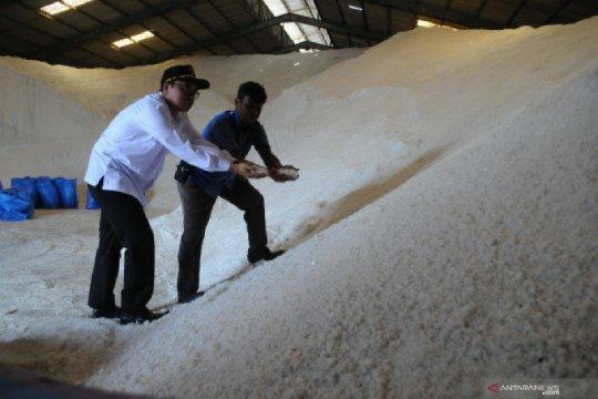 Ribuan ton garam Madura 2019 belum terserap