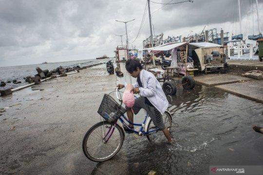 BMKG: Warga pesisir terdampak rob harus waspada musim hujan