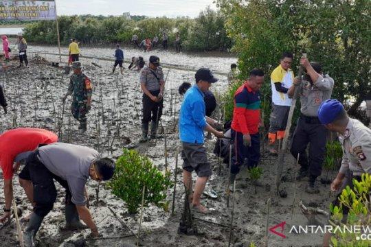 Cagar Alam Tanjung Panjang ditanami mangrove BKSDA Sulut-Gorontalo