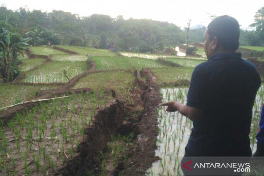 Pendataan pergerakan tanah Kadupandak-Cianjur terus dilakukan BPBD