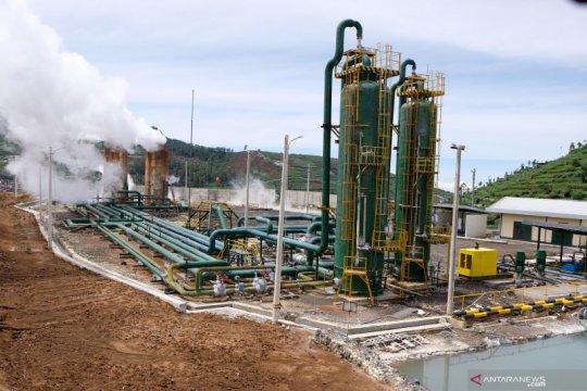 Selandia Baru ajak Indonesia perkuat energi bersih pascapandemi