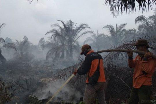 Karhutla Riau jerat sembilan tersangka