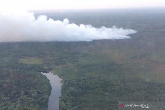 BNPB: Ada titik api Karhutla di SM GSK Riau