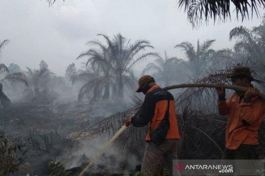 BMKG: Belasan titik panas Karhutla kepung Bengkalis