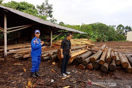 Polisi sita 850 batang log-kayu olahan ilegal
