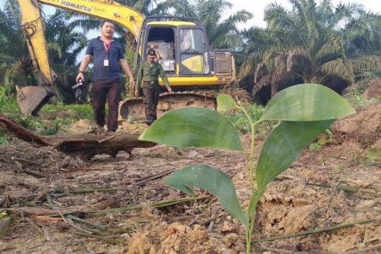 MA nyatakan eksekusi lahan sawit Desa Gondai Riau tak sah