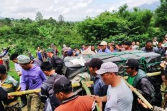 Masih perlu diobservasi, Harimau sumatera ditranslokasi ke Lampung