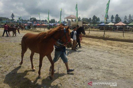 327 kuda ikut lomba pacuan kuda tradisional di Bener Meriah