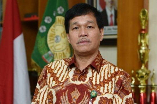 USU buka Program Studi Kelapa Sawit