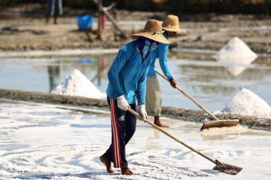 Anggota DPR ingin petani garam dilibatkan dalam kepentingan impor