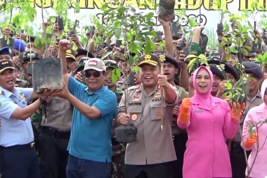 Peduli penghijauan, Polda Kalsel tanam 31.296 pohon