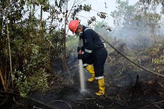 Karhutla terjadi di pinggir Kota Pekanbaru