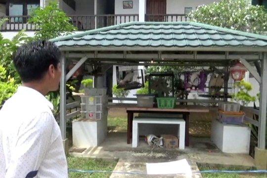 BKSDA Kalbar tampung hewan-hewan yang akan diselundupkan ke Malaysia
