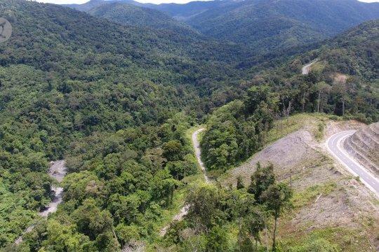 Dukungan internasional untuk percepat pengurangan emisi di Indonesia