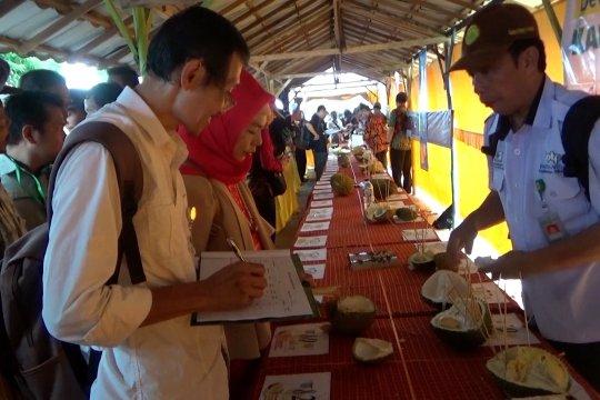 Kontes durian unggulan asal Banjar Kalsel