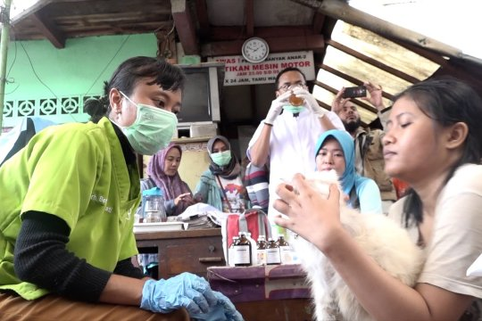 Periksakan hewan terdampak banjir ke klinik keliling gratis