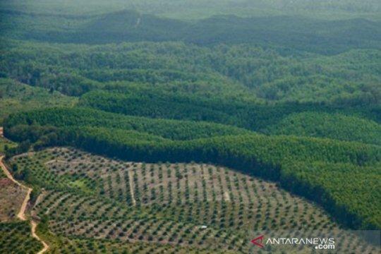 Investasi masuk ke Riau 2019 capai Rp41,8 triliun terbesar se-Sumatera