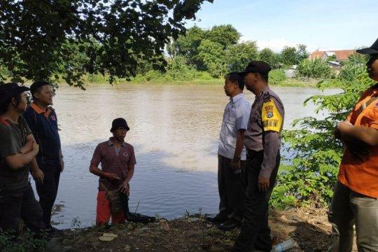 Petugas BPBD cek lokasi kemunculan buaya di Sungai Brantas