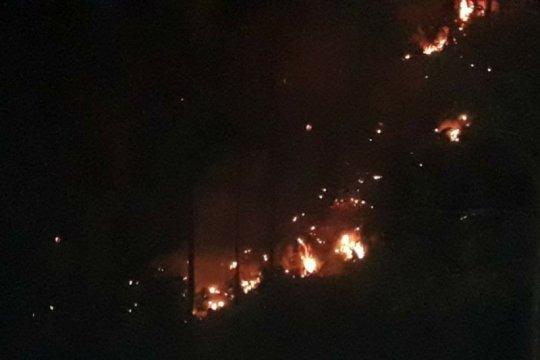 Tiga hektare lahan serai wangi terbakar di Gayo Lues Aceh
