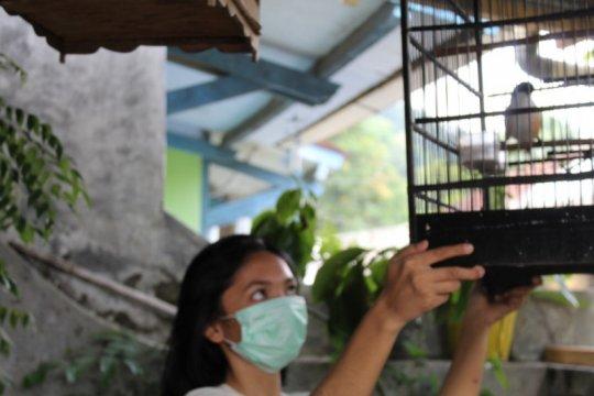 100.000 vaksin tersedia antisipasi flu burung di Lampung