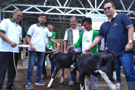 IPB bantu teknologi pertanian untuk masyarakat desa di Garut