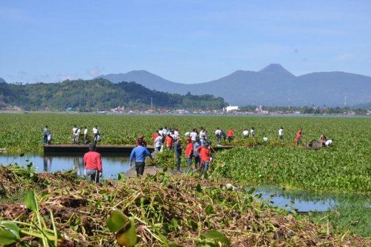 Lantamal-masyarakat bersihkan eceng gondok Danau Tondano