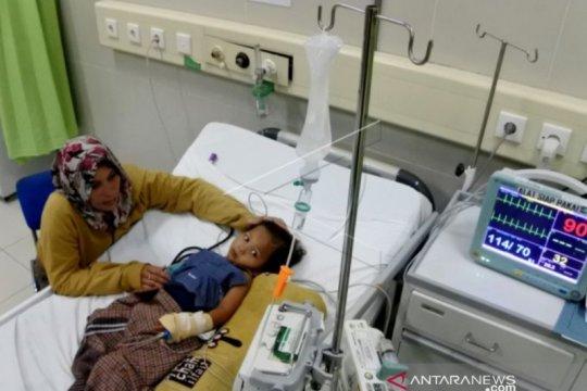 Tiga kabupaten di NTT tetapkan KLB demam berdarah