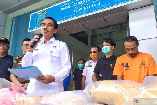 BNNP Bali memusnahkan 53 paket ganja kering jaringan Medan-Bali