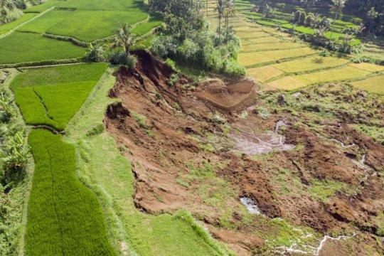 Akibat pergerakan tanah, area persawahan di Bandung Barat longsor timbun 10 rumah