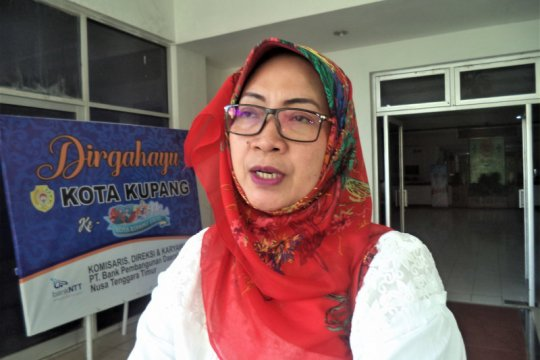 Januari-Februari 2020, sudah 206 warga Kupang terserang DBD