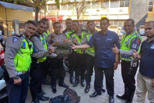 Polisi amankan empat kilogram ganja saat razia lalu lintas
