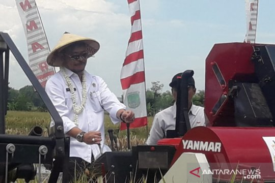Kementan persiapkan cetak sawah 600.000 hektare bersama BUMN