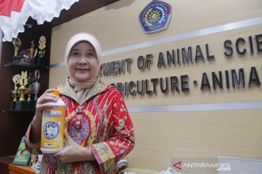 """Prof UMM atasi pakan ternak dengan inovasi bioteknologi """"5 in1"""""""